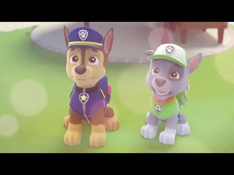 PAW Patrol Rocky and Chase Tribute
