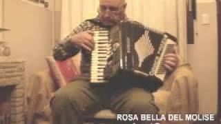 ROSA BELLA DEL MOLISE (MOTIVO MORISANO)