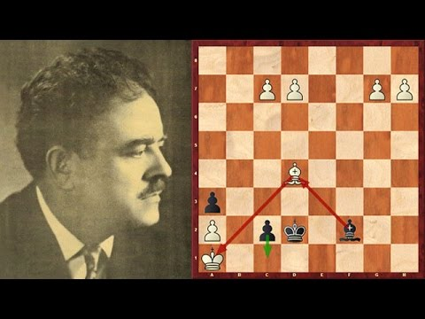 Selected Brilliant Chess Puzzles! No. 6