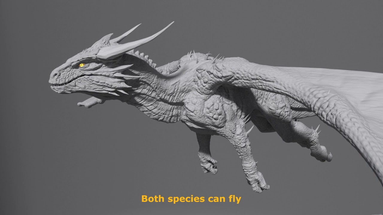 differences between wyvern vs