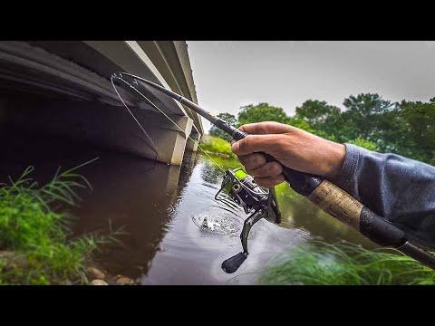 Fishing ONLY Bridges Challenge!  (Bank Fishing Rivers)