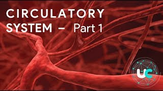 S&T 1 : Life Science | Circulatory System Part 1 for UPSC
