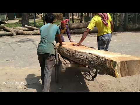 Impossible! Wood Cutting by 2 Hours in Rural Saw Mill of Asia/BD Expert Cutting Full Sliced Woods