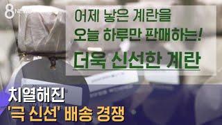 갓 낳은 달걀 · 막 짜낸 참기름…'극 신선' 배송 경…