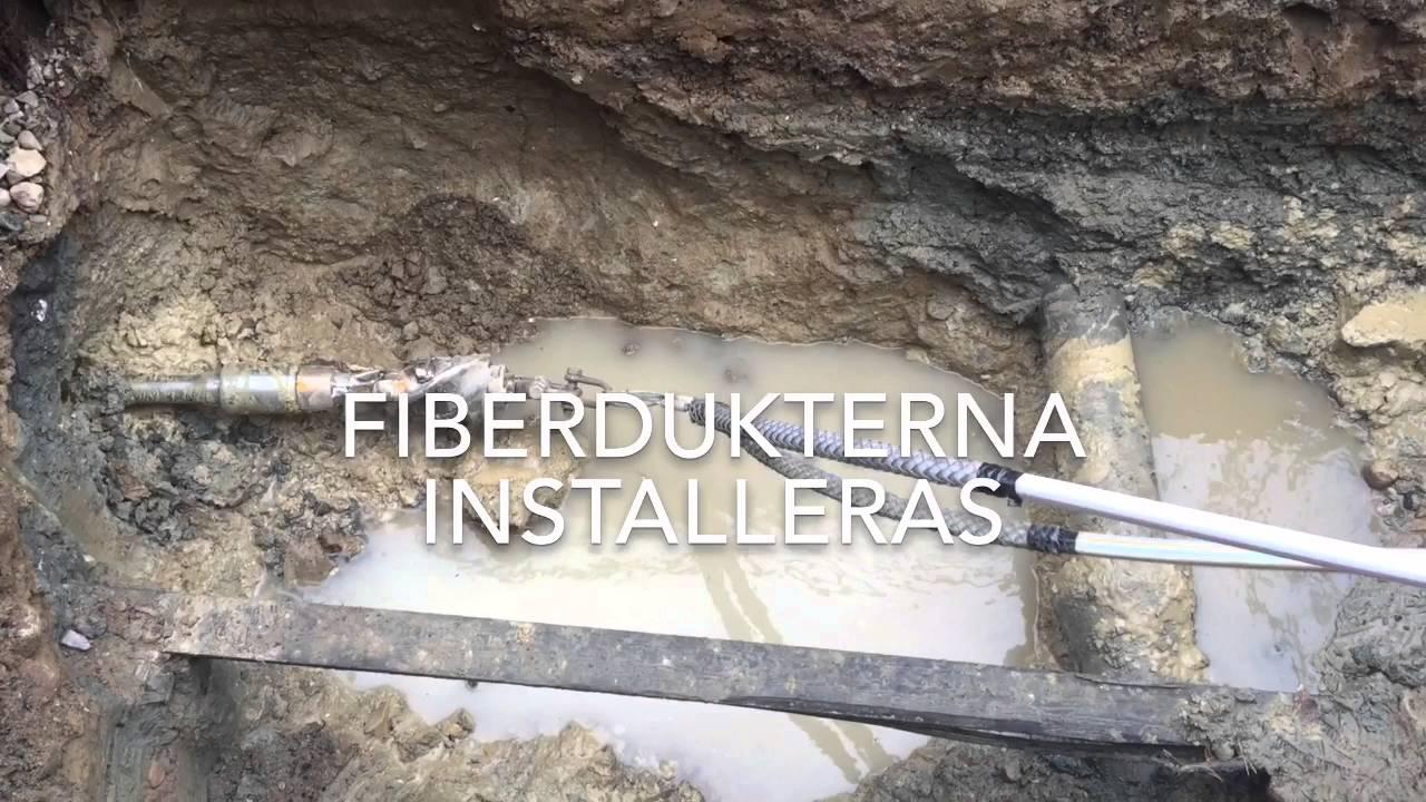 fiber i hemmet