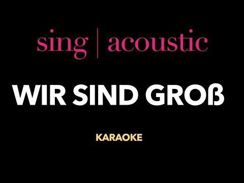 Mark Forster - Wir sind groß (Karaoke/ Instrumental)
