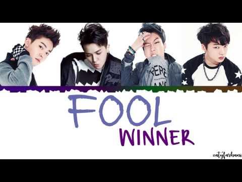 WINNER (위너) - FOOL Lyrics [Color Coded_Han_Rom_Eng]