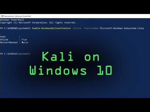 How to Install Kali Linux on Windows 10 from the Microsoft Store [Windows Subsystem for Linux]