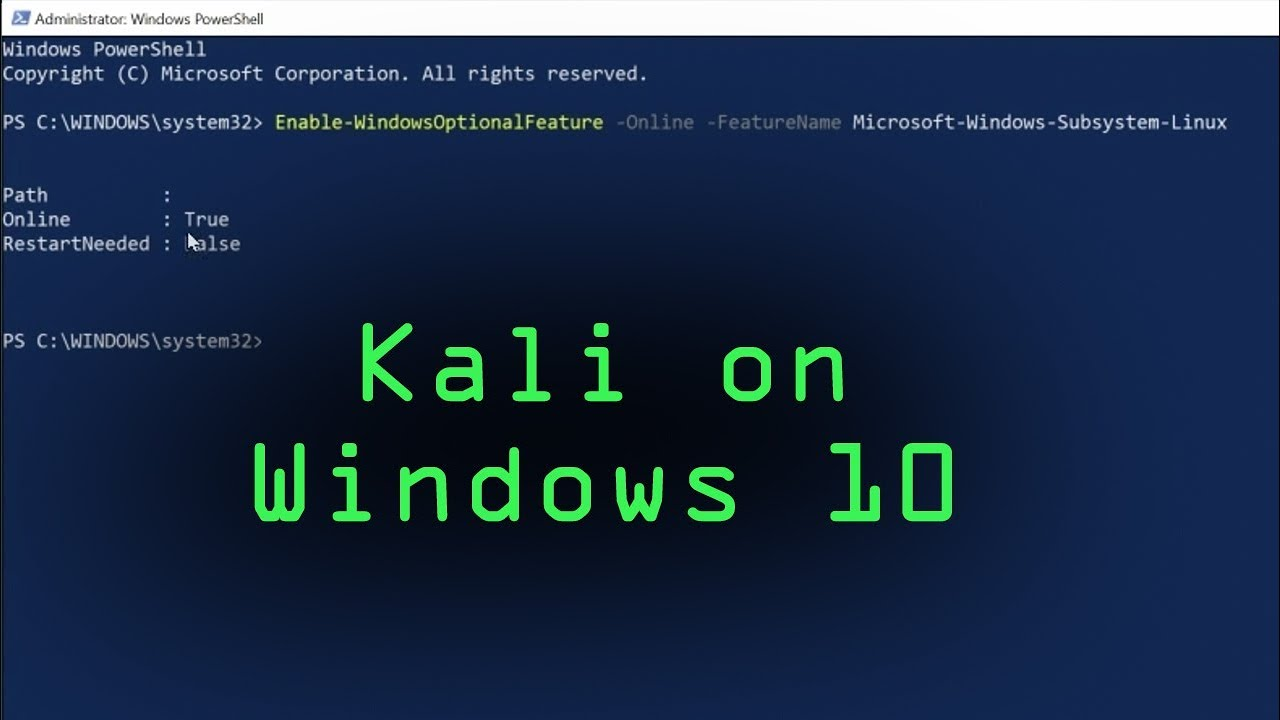 How to Install Kali Linux on Windows 10 from the Microsoft ...