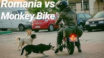 Monkey Bike Adventure 1300km across Romania