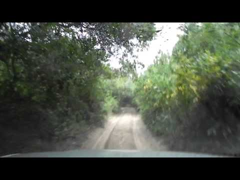 Driving through the bushes in the Maputo elephant reserve