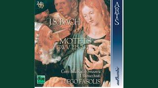 Jesu meine Freude BWV 227: IX. Gute Nacht o Wesen