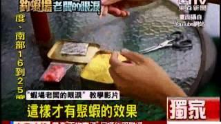 [東森新聞]釣蝦必殺餌公開 號稱「蝦場老闆的眼淚」