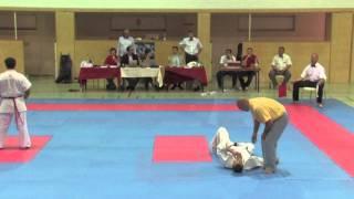 Karate Vienna Open 2011 Kyokushin kan KOs1