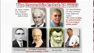 Dr Wesley Muhammad on Marijuana and the Assault on the Black Male: Fact or Fiction?