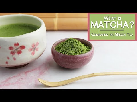 What is Matcha Green Tea? | Matcha Benefits and a Comparison to Green Tea & Coffee