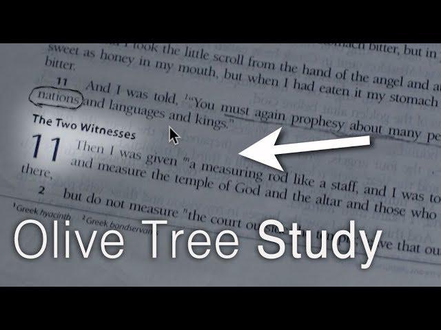 Hidden Bible Code Reveals The Two Witnesses! (Ezekiel 37 Study)
