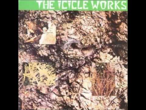 the Icicle Works  nirvana