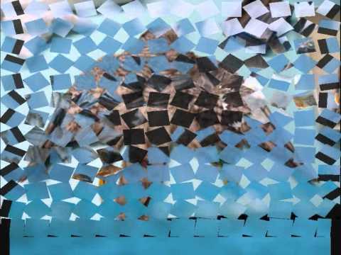 CUENTO: el zopilote y el gavilán.wmv