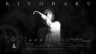 directed by: YUTARO shooting by: 小田切明広 □アルバム『エレジー』 2...