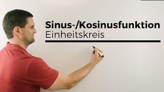 Sinus-/Kosinusfunktion verdeutlicht mit Einheitskreis, Kreisfunktionen | Mathe by Daniel Jung