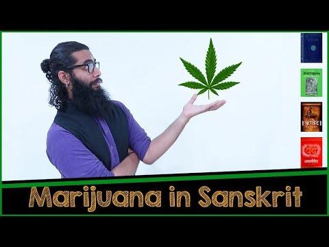 Download Marijuana in AtharvaVeda, Ayurveda and more...