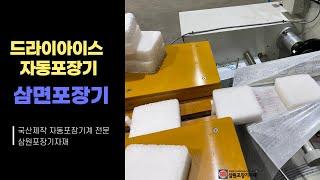 드라이아이스 포장을 위한 필로우삼면포장기(테크린)