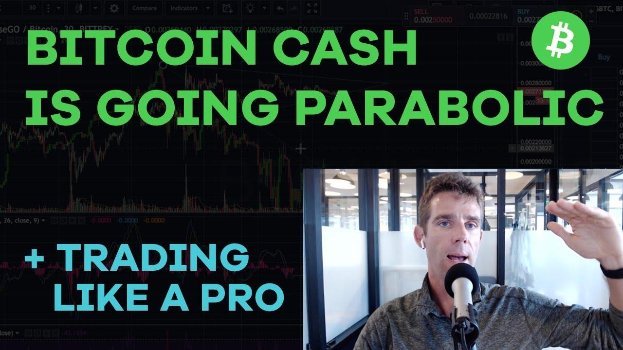 Bitcoin Cash Going Parabolic! BTC Dips to $6,500, Roger vs Jihan, Trading Like A Pro - CMTV Ep83