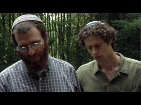 Kosher Slaughter: A behind the scenes look at Kosher food preparation
