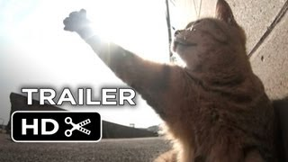 The Paw Project Official Trailer 1 (2013) - Documentary HD