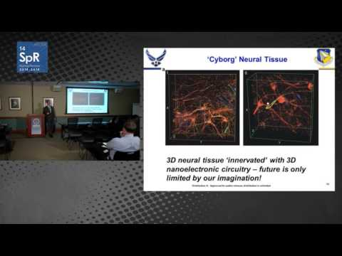 Dr. Patrick Bradshaw - Human Performance and Biosystems | Sensory Information Systems Program