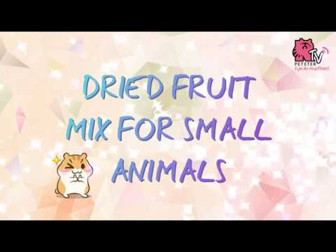 Dried Fruit Mix for Small Animals (Christmas treat for your little friends!)