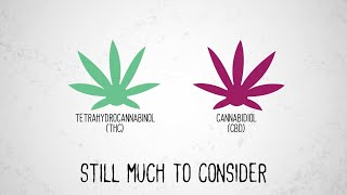 Do you know the difference between cannabidiol (cbd) and tetrahydrocannabinol (thc)? learn more about effects of cannabis on brain. debuted at 2020 n...