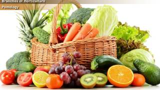 Video Introduction to Horticulture [Year-1] download MP3, 3GP, MP4, WEBM, AVI, FLV Oktober 2018