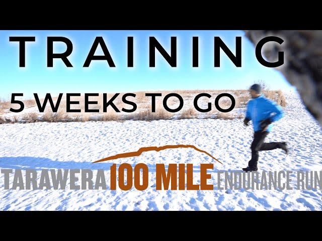100 Mile Training: 5 weeks out from Tarawera in New Zealand