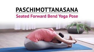 Paschimottanasana | Seated Forward Bend Yoga Pose | Steps | Benefits | Yogic Fitness