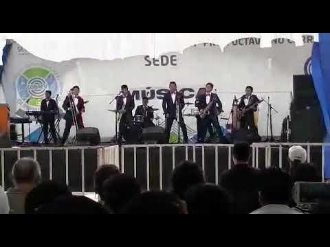 Elegancia Latina-Interpretacion musical cobaev 08