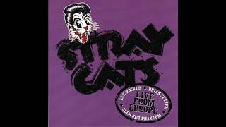 Stray Cats - Twenty Flight Rock (live)
