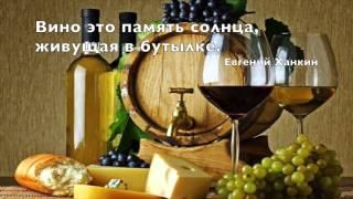 In vino veritas - Винный тур юга Черногории(По следам виноделов-винный тур юга Черногории. Отведайте душистое вино из винограда сорта Вранац. Самый..., 2014-08-27T08:18:39.000Z)