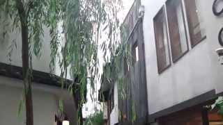 京都市中京区の錦小路通側から南北約60mほどの道の柳小路を歩きました。