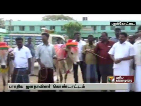 Pudukkottai BJP cadres thank centre for allowing jallikattu