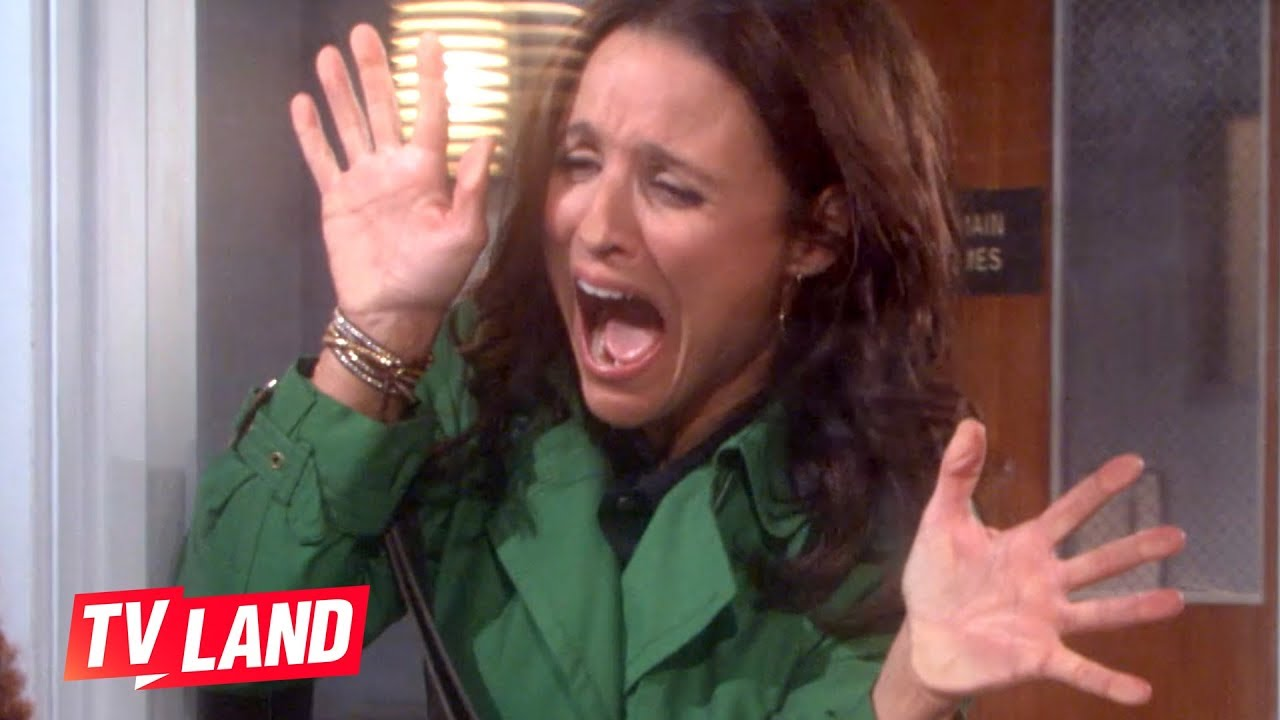 Download The Best of Christine | The New Adventures of Old Christine | TV Land