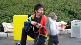 monkey show in tokyo i recorded this one