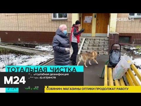 В Москве пройдет масштабная дезинфекция дорог и общественных пространств - Москва 24