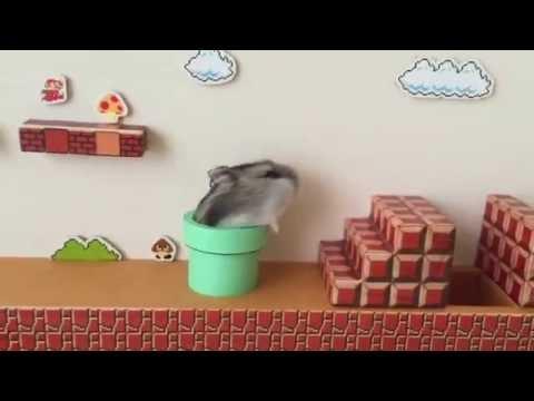 El adorable Mario Bros que todos quieren tener