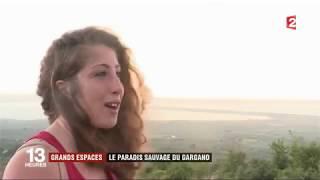 Le parc national du Gargano - France 2 Journal 13h00 15/08/2017