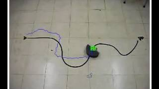 Remote Guidance of Untrained Turtles