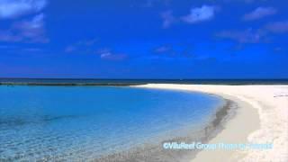 【Sleep Sound】Sea Waves and Seagulls/Meditation Nature Sounds
