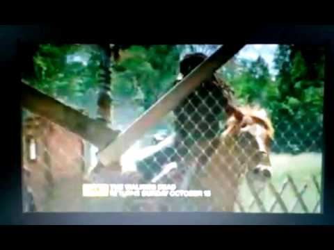 Download The Walking Dead Season 4 Preview/Clip (During 'Low Winter Sun' 8/25/13)