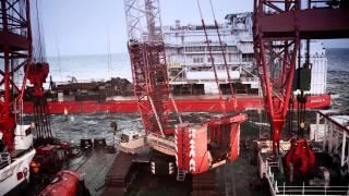 Borkum Riffgrund 1 - DONG Energy